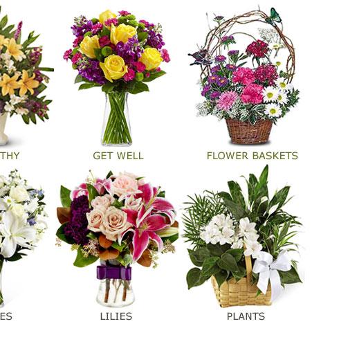 Ronsley Florist Chicago Flowers Shop